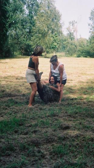 La préhistoire en 2005